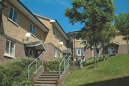 Falmer Campus (4)